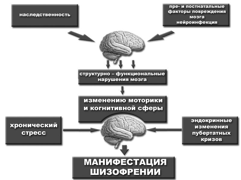 тест на определение шизофрении