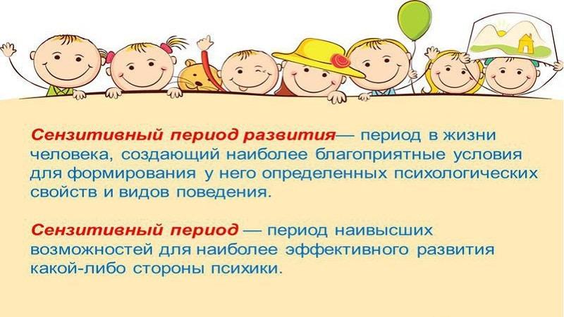 сенситивные периоды развития ребенка