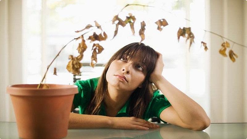 признаки нервного истощения и депрессии